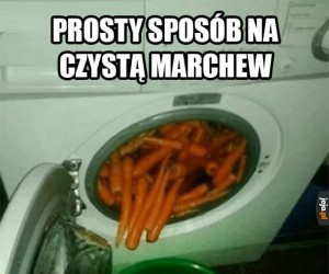 Czysta marchew