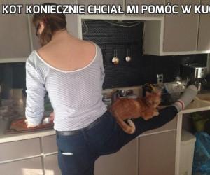 Kot koniecznie chciał mi pomóc w kuchni