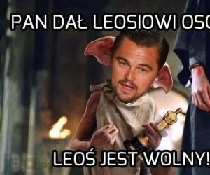 Tak, Leoś jest wolny!