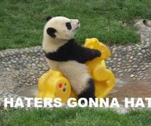 Panda na poprawę humoru