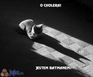 O cholera! Jestem batmanem!