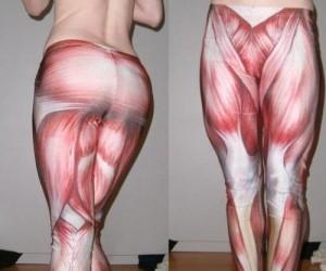 Umięśnione legginsy