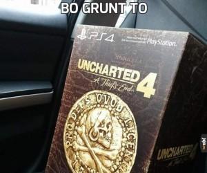 Bo grunt to