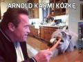 Arnold karmi kózkę