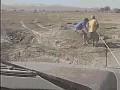 Uratowane słoniątko biegnie do swojej mamy