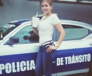 Meksykańska drogówka