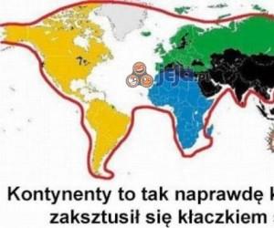 Jak naprawdę wygląda świat