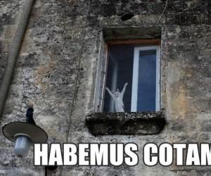Koci papież