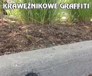 Krawężnikowe graffiti