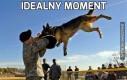 Idealny moment