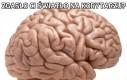 Mózg i ciemność