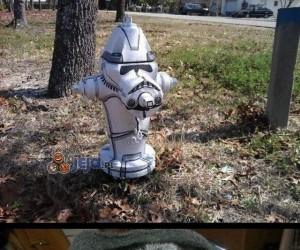 Coś dla psich fanów Gwiezdnych Wojen