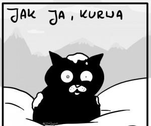 Puścić kota w góry...