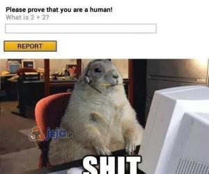 I weź tu korzystaj z internetu...