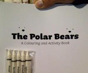 Pokoloruj misia polarnego