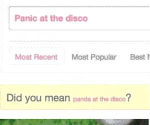 Disco panda