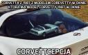 Ktoś jest dużym fanem Corvetty