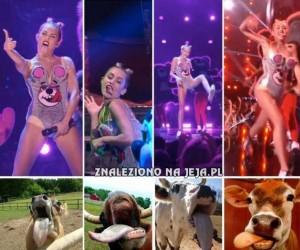 Miley i jej inspiracje...