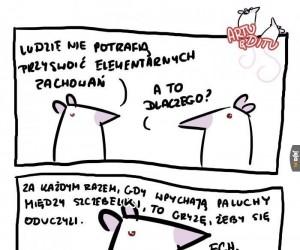 Szczurze problemy