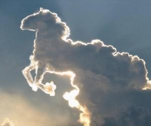 Konia widzę w tej chmurze!