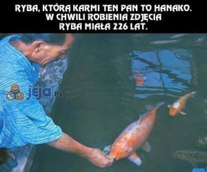 Baaardzo stara ryba