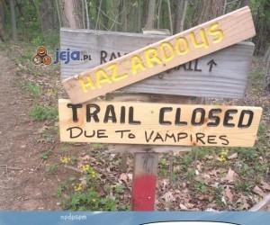 Uprzejme wampiry na drodze