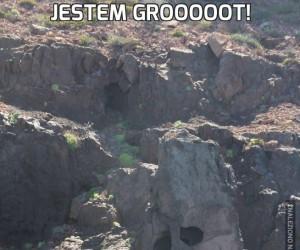 Jestem Grooooot!
