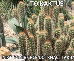 To kaktus