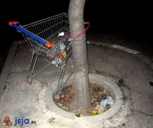 Wózek zabezpieczony przed kradzieżą
