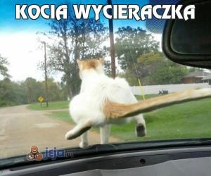 Kocia wycieraczka