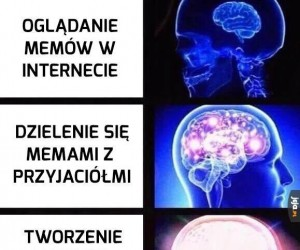 Władcy memów