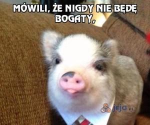 Sadystyczna świnka