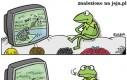 Kermit i program przyrodniczy