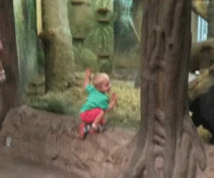Zabawa z gorylem w zoo