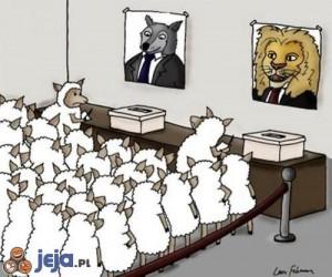 Czym tak naprawdę są wybory