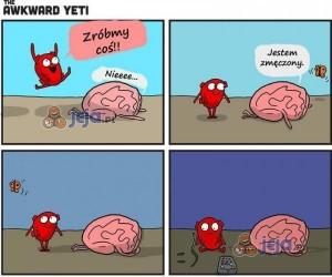 Ogarnij się mózgu