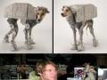 Cosplaye z Gwiezdnych Wojen