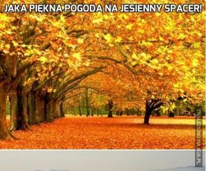 Jaka piękna pogoda na jesienny spacer!
