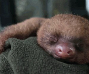 Jestem taki śpiąąąąą... A nie. Żartowałem!