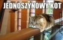 Jednoszynowy kot