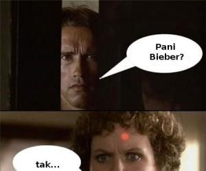 Terminator powrócił