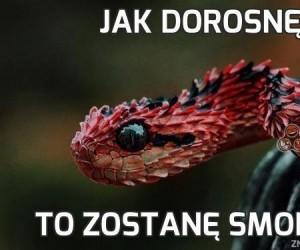 Niezwykły wąż z Indonezji