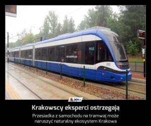 Krakowscy eksperci ostrzegają