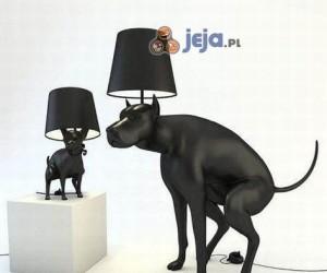 Lampy dla miłośników psów