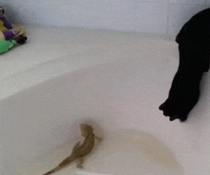 Kiedy woda jest za gorąca