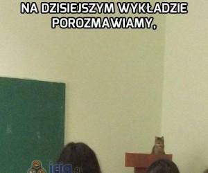 Profesor Koteł