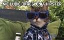 Nie lubię określenia hipster