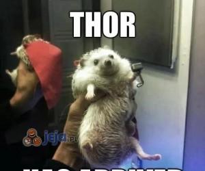 Thor przybył
