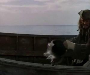 Nowe przygody Jacka Sparrowa