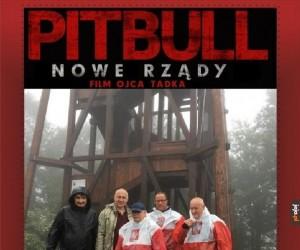 Nowy Pitbull zapowiada się świetnie